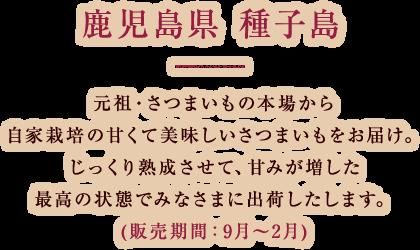 鹿児島県 種子島 元祖・さつまいもの本場から自家栽培の甘くて美味しいさつまいもをお届け。じっくり熟成させて、甘みが増した最高の状態で出荷いたします。(販売期間:9月~2月)
